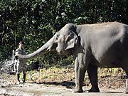 Zoo_1
