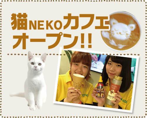 猫NEKOカフェ オープン!!