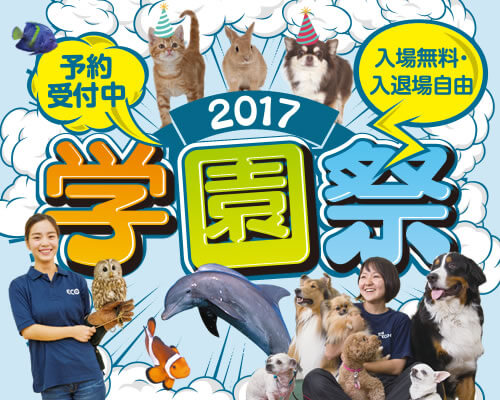 2017学園祭