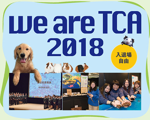 we are TCA 2018