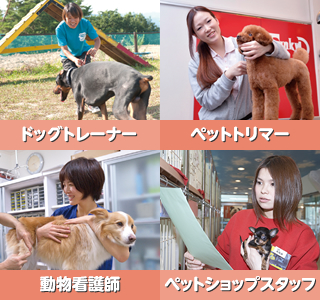 犬や猫に関わる仕事がしたい